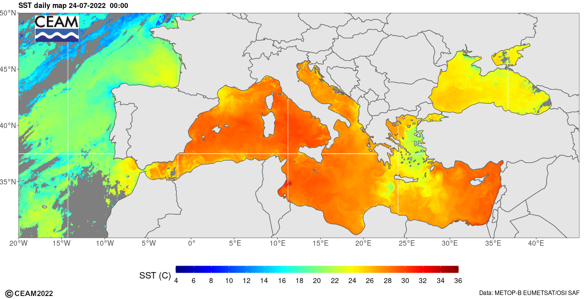 Mediterranean Sea Surface Temperature - CEAMed