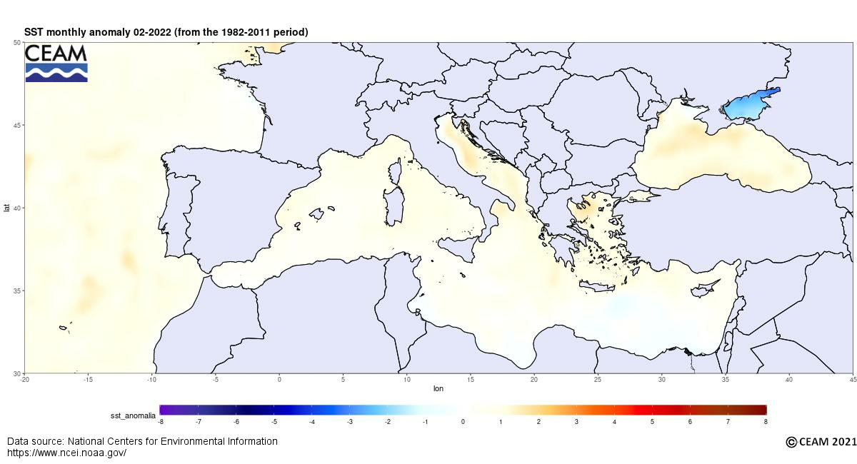 Latest SST anomaly (NCEI)